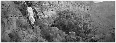 Thunder Spring waterfall. Grand Canyon  National Park (Panoramic black and white)