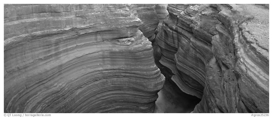 Sculptured rock in slot canyon. Grand Canyon National Park (black and white)