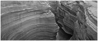 Sculptured rock in slot canyon. Grand Canyon  National Park (Panoramic black and white)