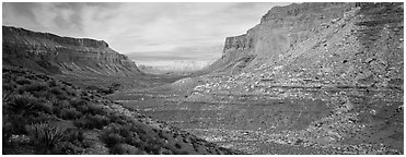 Havasu Canyon. Grand Canyon National Park (Panoramic black and white)