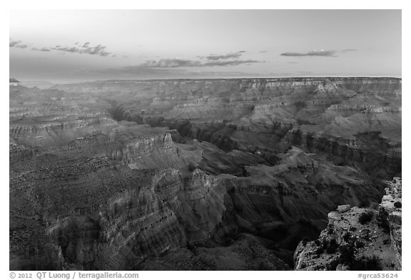 Red Canyon and Colorado gorge from Moran Point. Grand Canyon National Park (black and white)