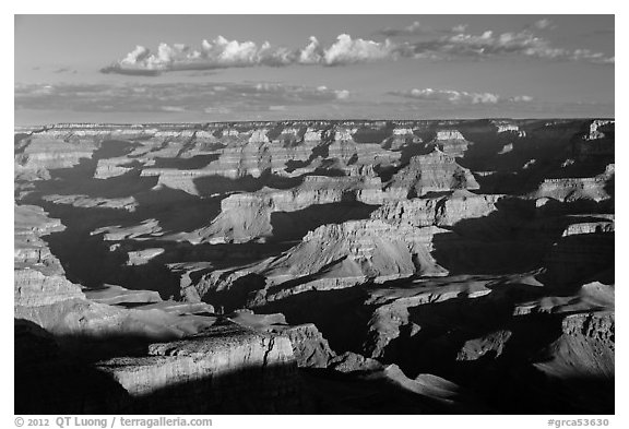 View from Moran Point, morning. Grand Canyon National Park (black and white)