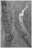 Cliffs and Colorado River, Toroweap. Grand Canyon National Park ( black and white)
