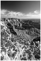 Cliffs near Cape Royal, morning. Grand Canyon National Park ( black and white)