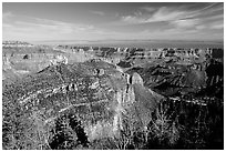 View from Roosevelt Point, morning. Grand Canyon National Park, Arizona, USA. (black and white)