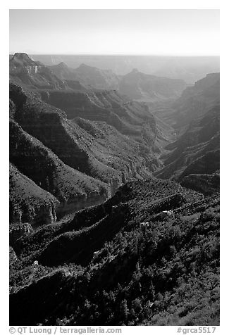Green side canyon on  road to Point Sublime. Grand Canyon National Park (black and white)