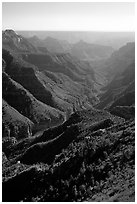 Green side canyon on  road to Point Sublime. Grand Canyon National Park, Arizona, USA. (black and white)