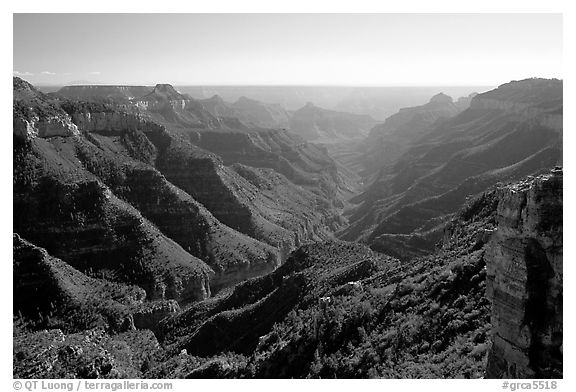 Lush side canyon, North Rim. Grand Canyon National Park (black and white)