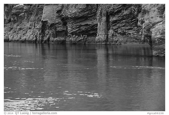 Redwall limestone reflected in green waters, Colorado River. Grand Canyon National Park (black and white)