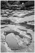 Reflection in pool, North Canyon. Grand Canyon National Park ( black and white)