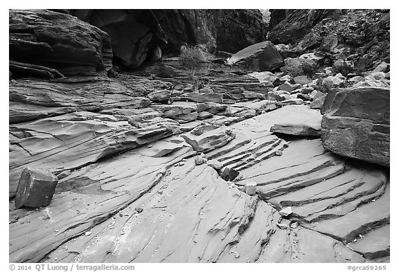 Sandstone terraces, North Canyon. Grand Canyon National Park (black and white)