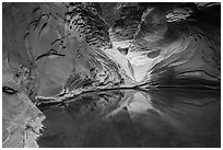 Reflection pool at base of sculpted spillway, North Canyon. Grand Canyon National Park ( black and white)