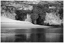 Beach, vegetation, and canyon walls, Marble Canyon. Grand Canyon National Park ( black and white)