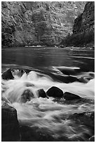 Colorado River rapids. Grand Canyon National Park ( black and white)