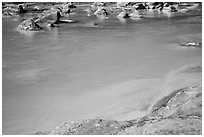 Turquoise waters of the Little Colorado River. Grand Canyon National Park ( black and white)