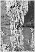 Close-up of salt stalagtites. Grand Canyon National Park ( black and white)