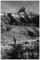 Backpacker, Escalante Route trail. Grand Canyon National Park ( black and white)
