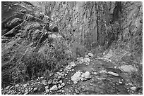 Cliffs and stream, Clear Creek. Grand Canyon National Park ( black and white)