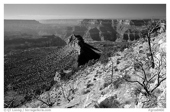 Bridger Knoll and burned slope from Monument Point, morning. Grand Canyon National Park (black and white)