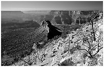 Bridger Knoll and burned slope from Monument Point, morning. Grand Canyon National Park ( black and white)