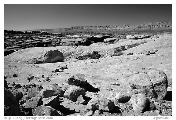 Esplanade, mid-day. Grand Canyon National Park (black and white)