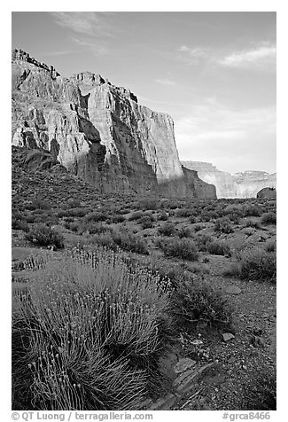Red wall seen from Surprise Valley, sunset. Grand Canyon National Park (black and white)