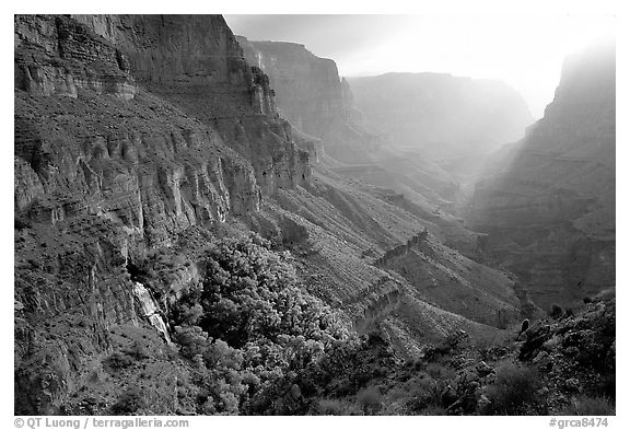Thunder Spring and Tapeats Creek, morning. Grand Canyon National Park (black and white)