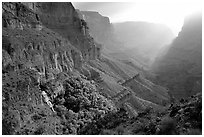Thunder Spring and Tapeats Creek, morning. Grand Canyon National Park ( black and white)