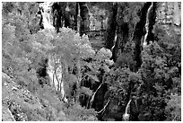 Thunder river lower waterfall, afternoon. Grand Canyon National Park, Arizona, USA. (black and white)