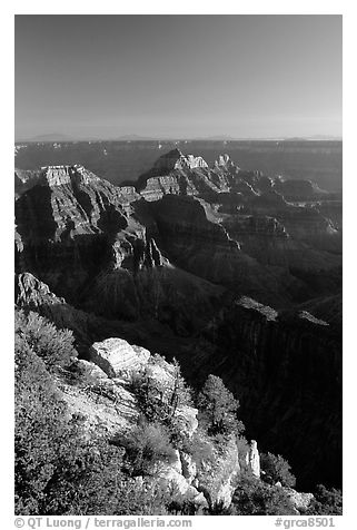 View from Bright Angel Point. Grand Canyon National Park (black and white)