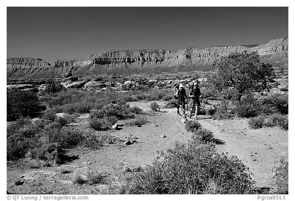 Backpackers on  Esplanade, Thunder River and Deer Creek trail. Grand Canyon National Park (black and white)