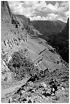 Backpacker on switchbacks above Tapeats Creek. Grand Canyon National Park, Arizona, USA. (black and white)