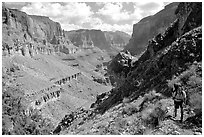 Backpacker on trail above Tapeats Creek. Grand Canyon National Park ( black and white)