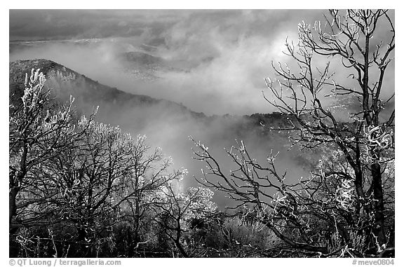 Clearing winter storm on North Rim, morning. Mesa Verde National Park (black and white)