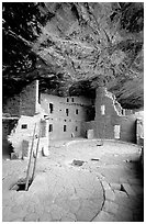 Ladder emerging from Kiva and Spruce Tree house. Mesa Verde National Park, Colorado, USA. (black and white)