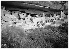 Cliff Palace ruin in rock alcove. Mesa Verde National Park, Colorado, USA. (black and white)