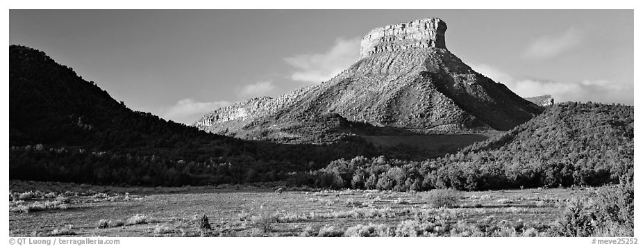 Lookout Peak and meadow. Mesa Verde National Park (black and white)