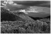 Prater Canyon, afternoon storm. Mesa Verde National Park, Colorado, USA. (black and white)