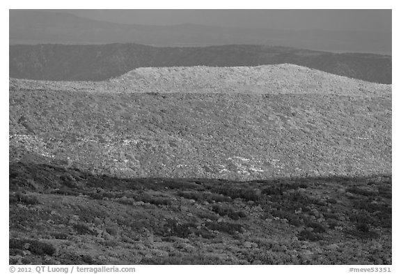 Layers of hills with autumn foliage. Mesa Verde National Park (black and white)