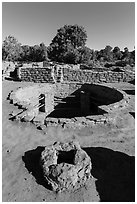 Oven and kiva, Coyote Village. Mesa Verde National Park, Colorado, USA. (black and white)