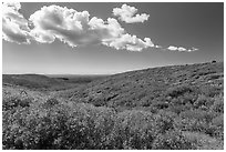 Clouds and slopes with autumn colors. Mesa Verde National Park, Colorado, USA. (black and white)