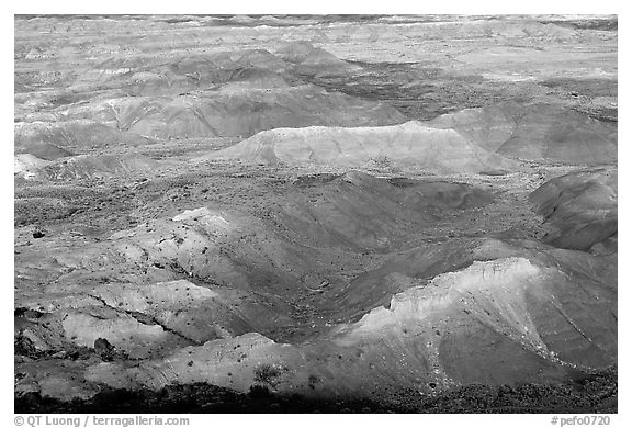 Painted Desert, morning. Petrified Forest National Park (black and white)