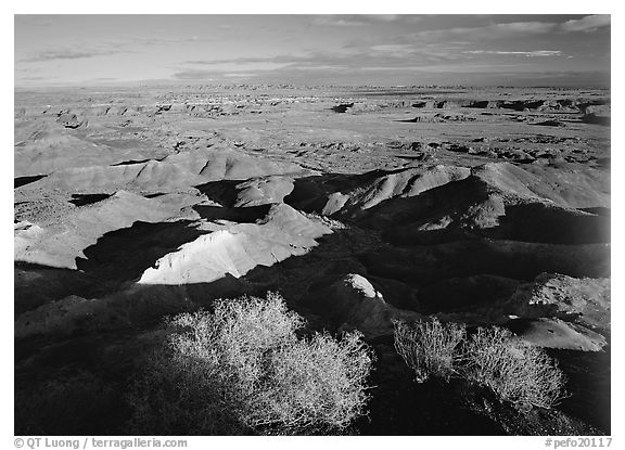 Ridges over badlands of Painted Desert, morning. Petrified Forest National Park (black and white)