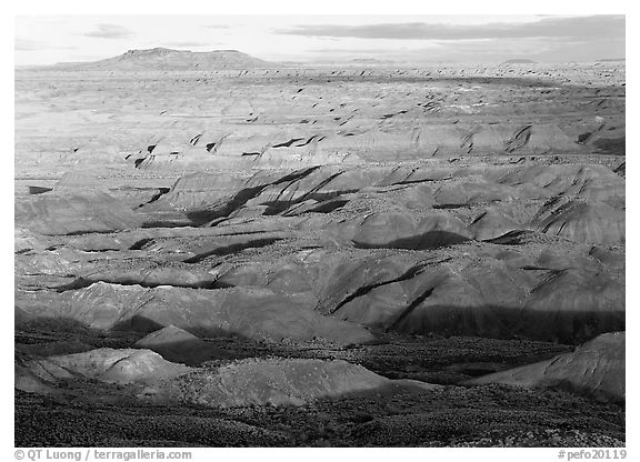 Painted Desert, early morning. Petrified Forest National Park (black and white)