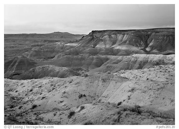 Badlands at sunset, Painted Desert. Petrified Forest National Park (black and white)