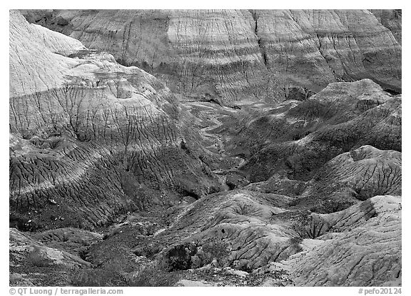Colorful bentonite badlands, Blue Mesa. Petrified Forest National Park (black and white)