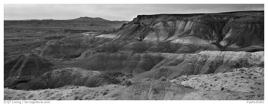 Painted Desert badlands at sunset. Petrified Forest National Park (black and white)
