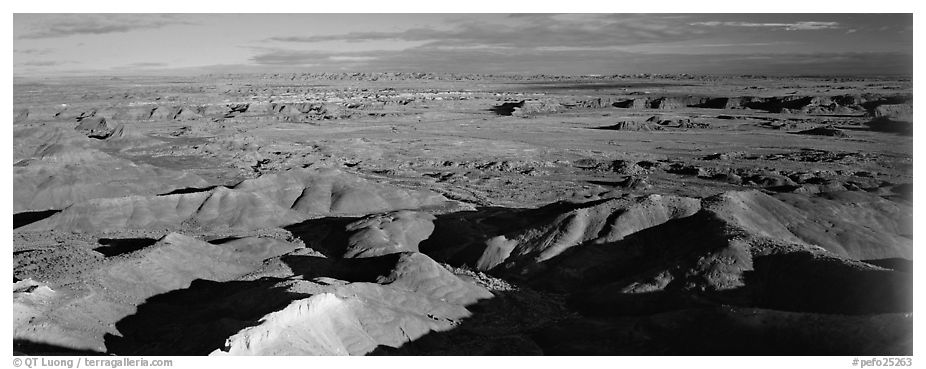 Painted Desert scenery. Petrified Forest National Park (black and white)