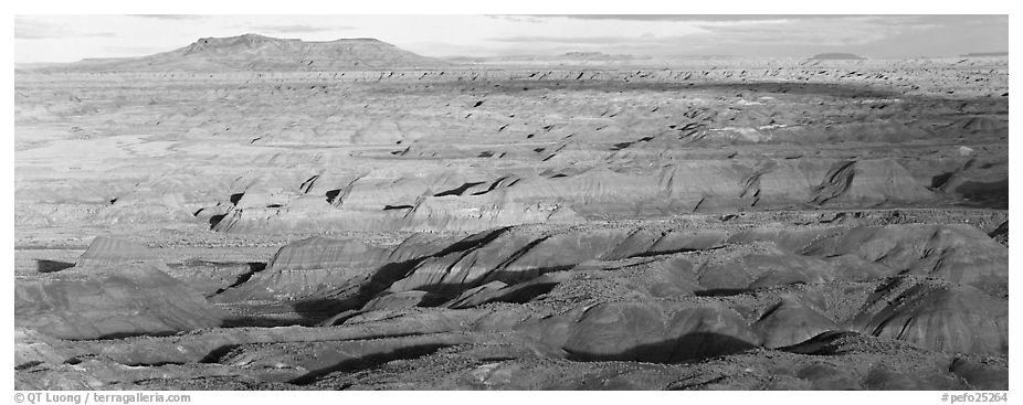 Ridges of Painted Desert. Petrified Forest National Park (black and white)
