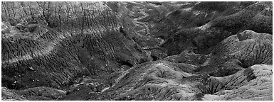 Multi-hued badlands. Petrified Forest National Park (Panoramic black and white)